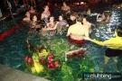 corona_pool_119