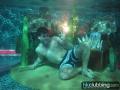 corona_pool_8